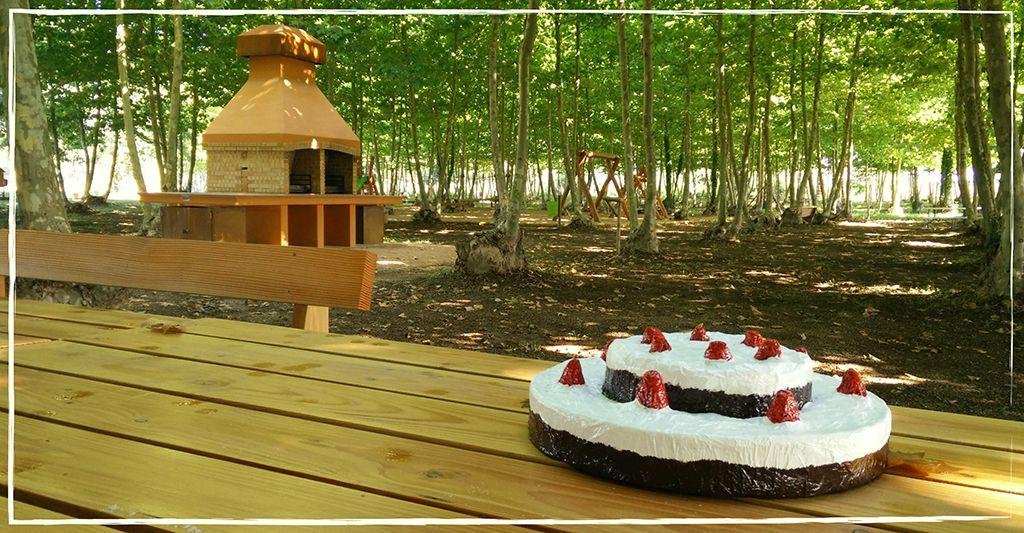 pastis aniversaris picnic les 3 flors