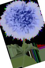 clavell blau picnic les 3 flors