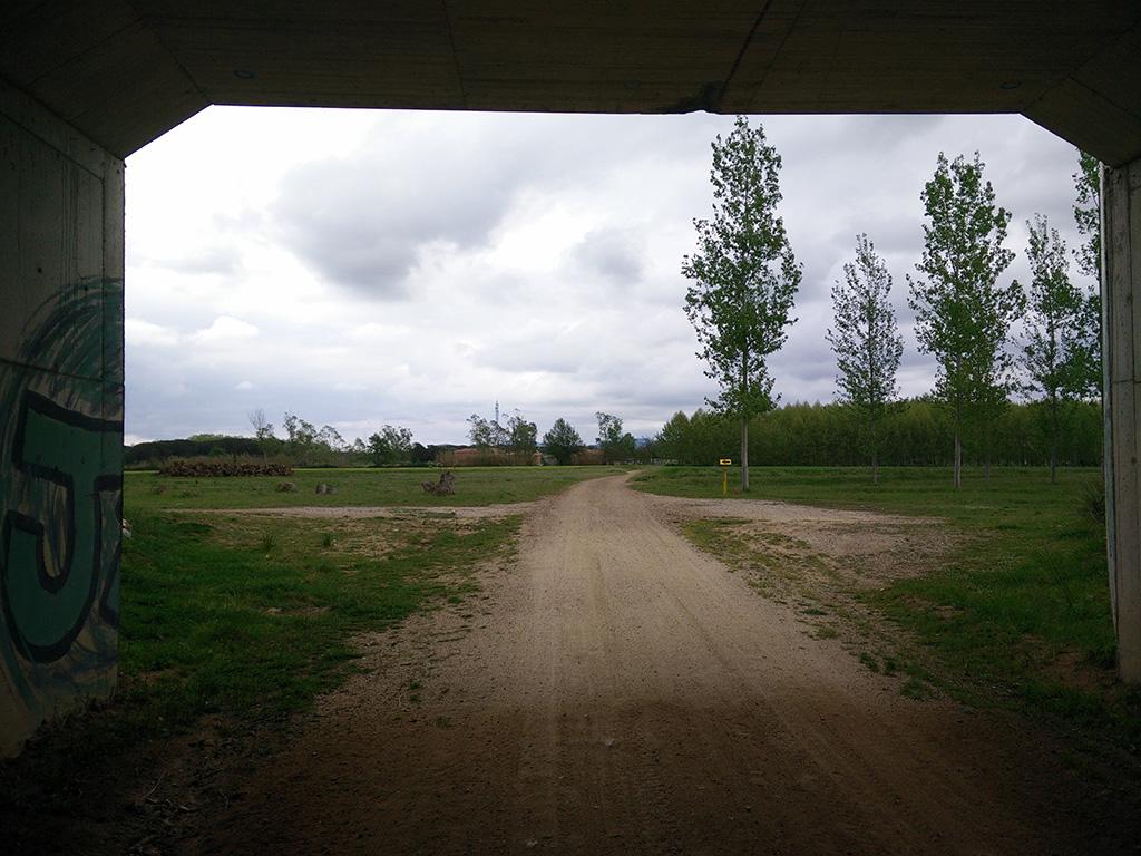 16. vista des de dins tunel carretera