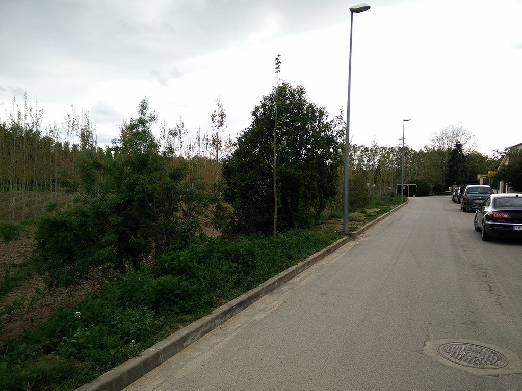 7. sigue calle asfalto direccion estanys de sils