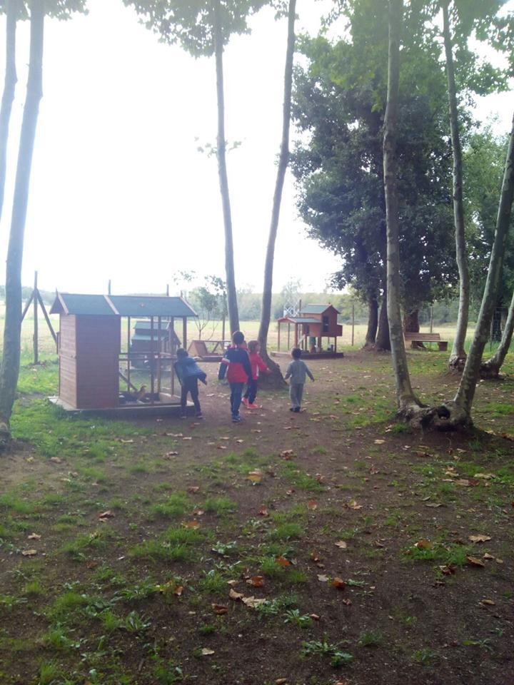 zona animales niños picnic les 3 flors