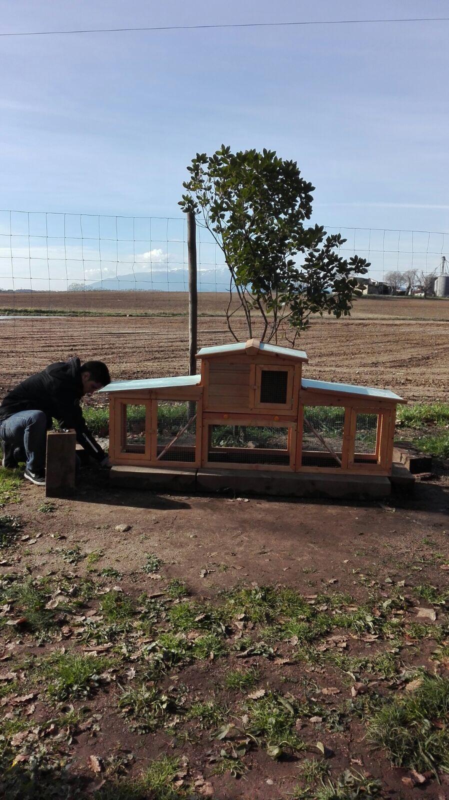 noi construint caseta conills picnic les 3 flors