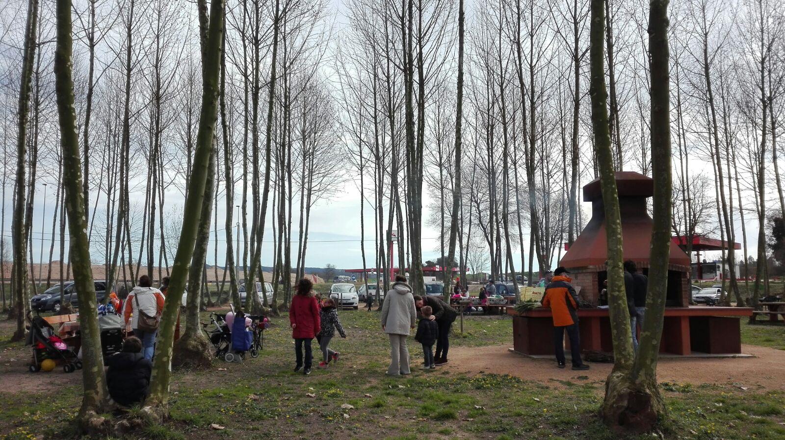 ambient familiar a picnic les 3 flors