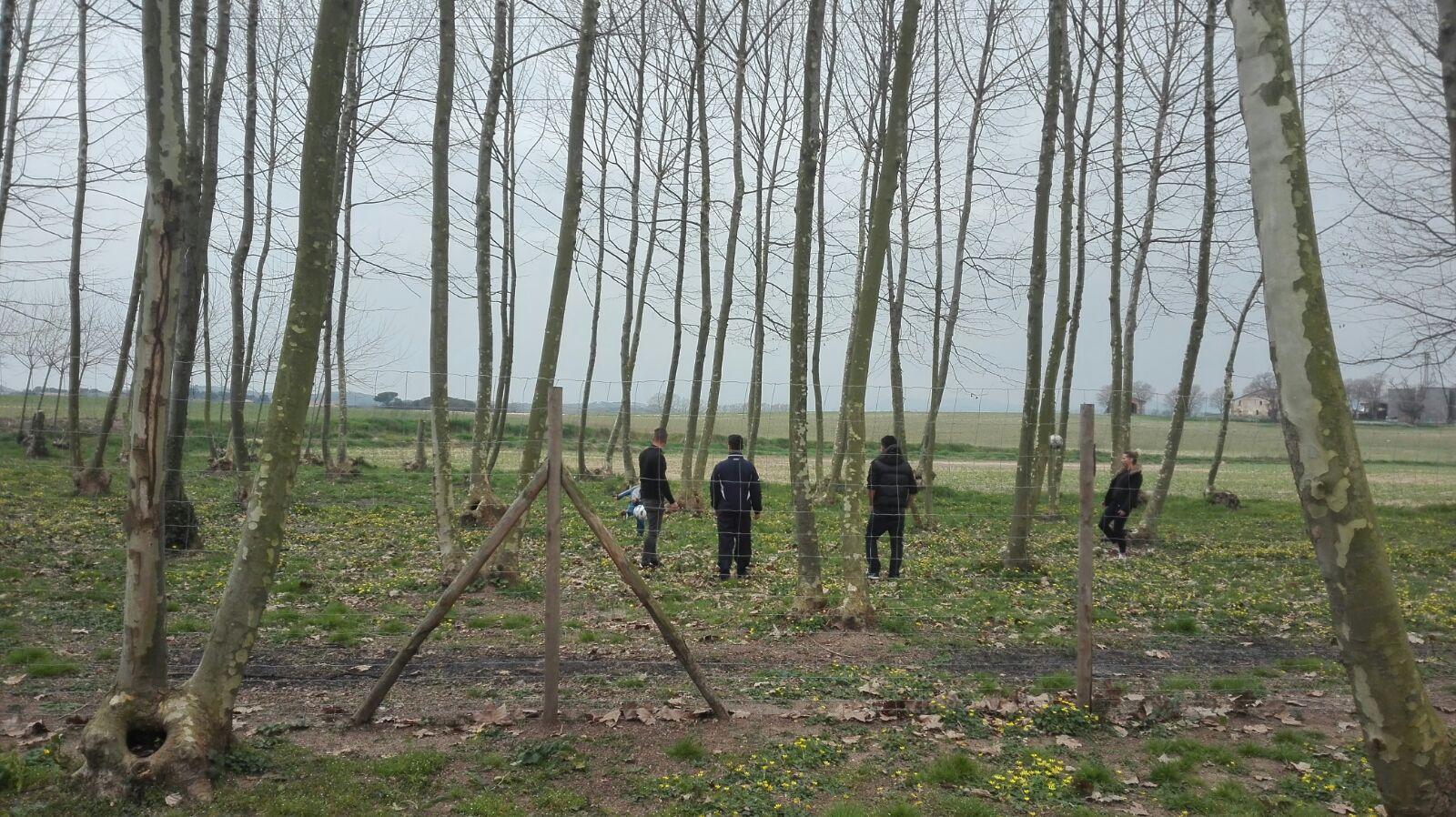 nois jugant a futbol al camp picnic les 3 flors