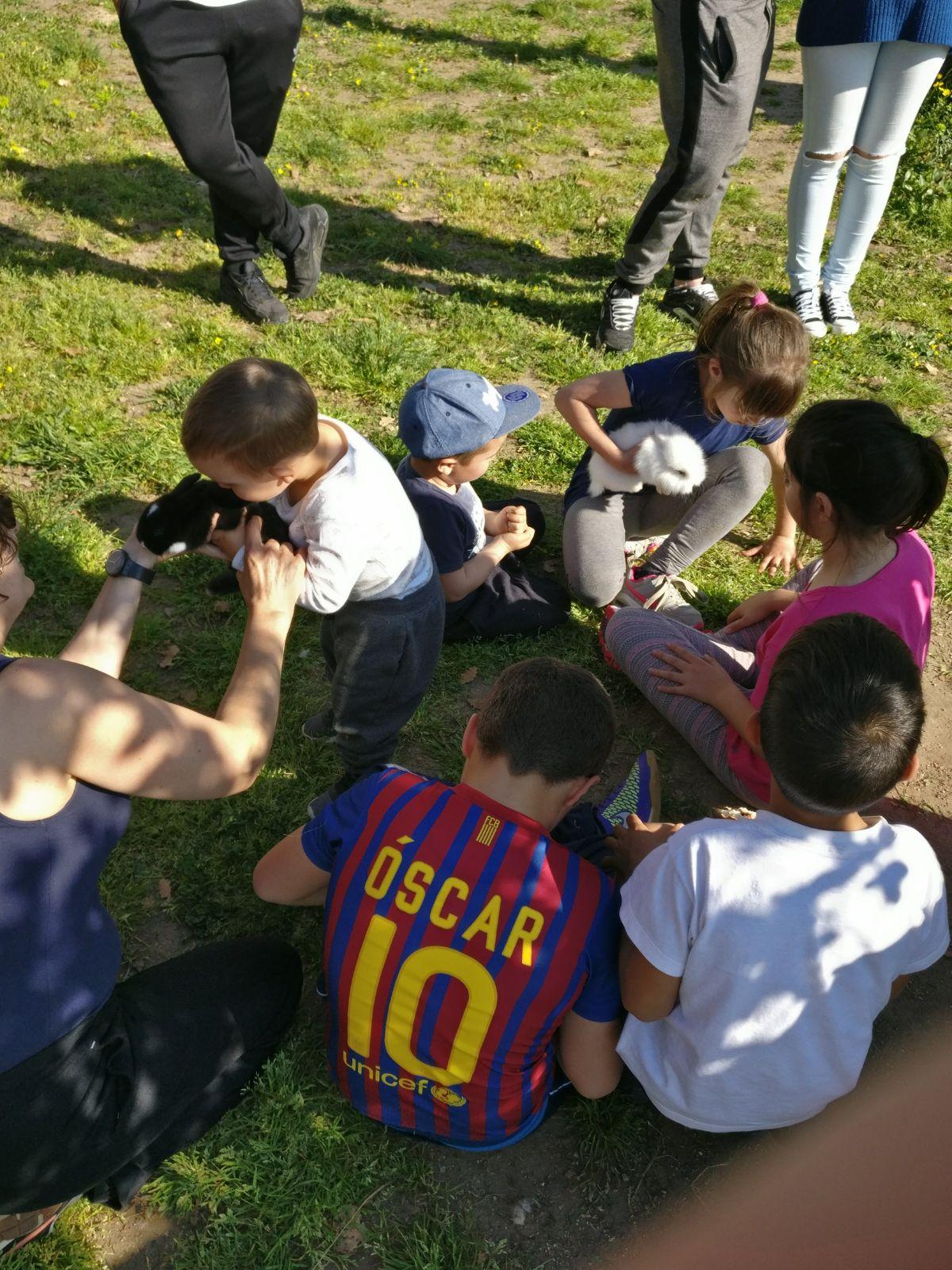 zona animals conills picnic les 3 flors
