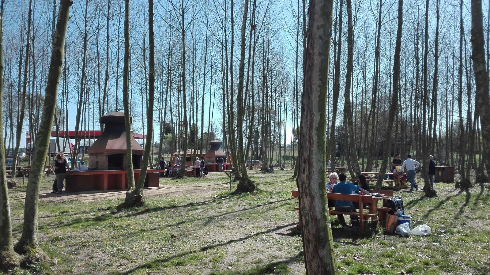 zona taules de fusta picnic les 3 flors