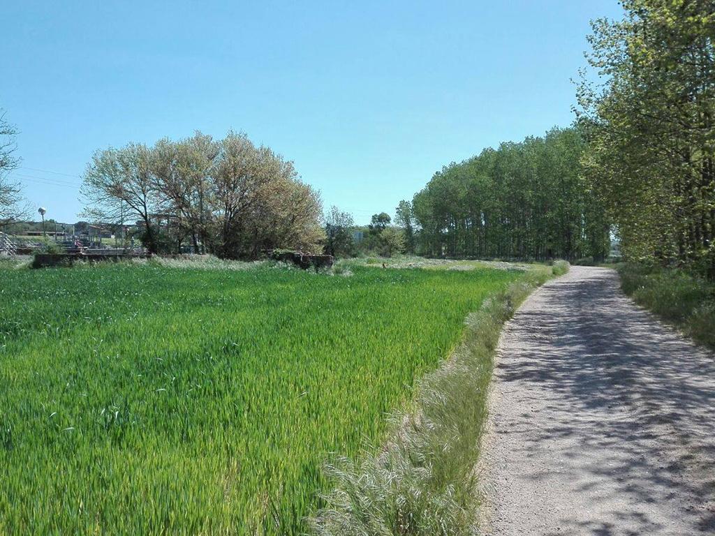 21. camino lado depuradora picnic les 3 flors