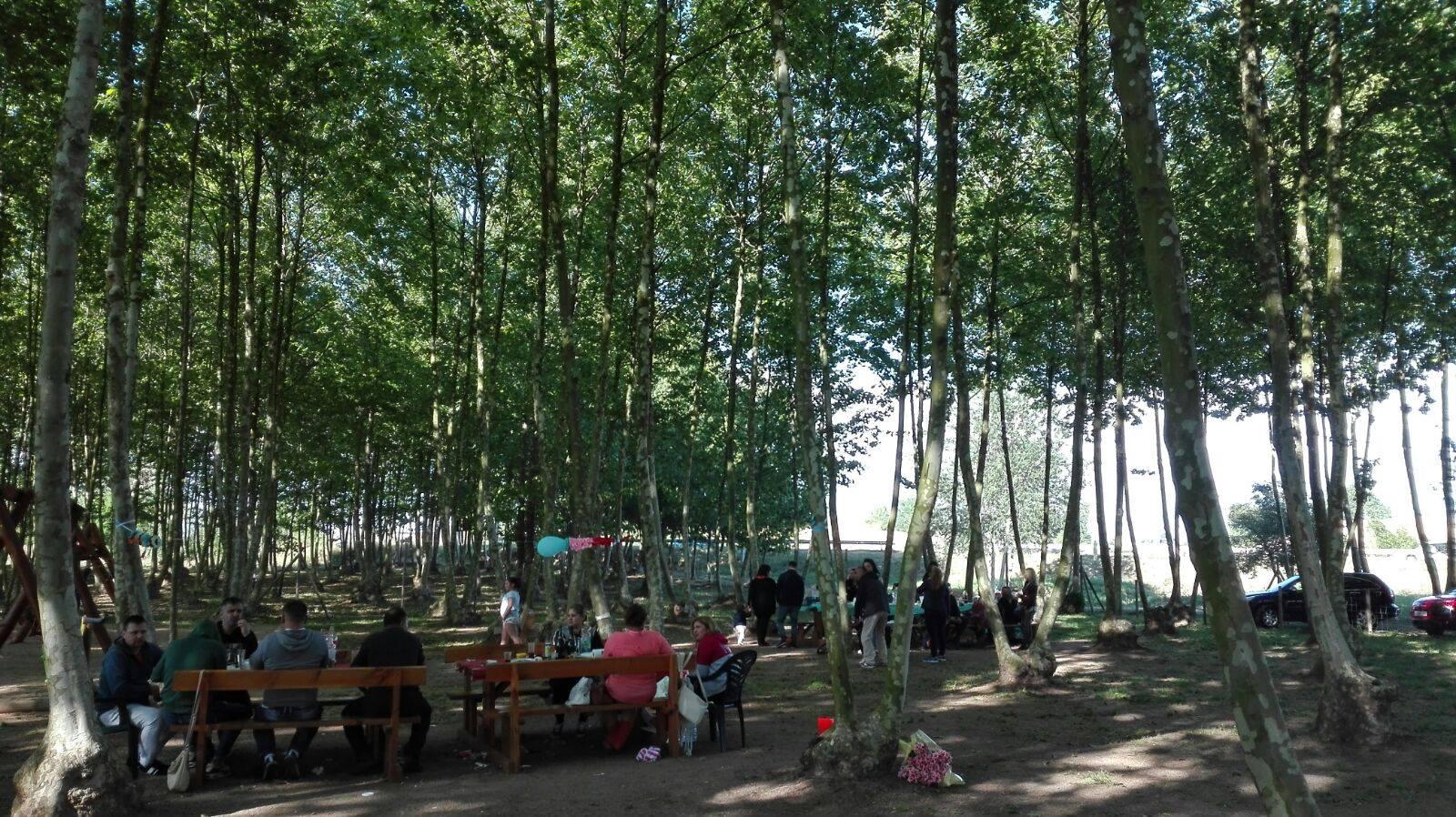 ambient gent a les taules picnic les 3 flors