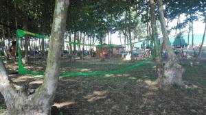 a-punt-per-jugar-a-voleibol-picnic-les-3-flors