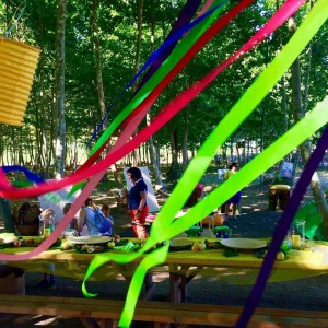 aniversari nens taula decorada picnic les 3 flors