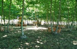 barbacoes taules natura estiu picnic les 3 flors