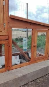 conills alimentats picnic les 3 flors