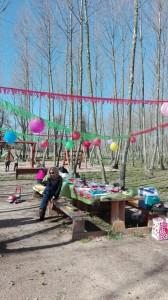 festa aniversari taula decorada picnic les 3 flors