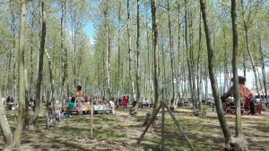 foto general espai picnic les 3 flors