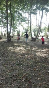 jugant-a-voleibol-picnic-les-3-flors