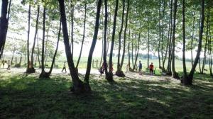 jugant al camp del costat picnic les 3 flors