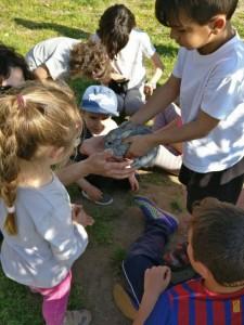 moment de tocar els conills picnic les 3 flors