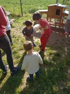 nen amb un conill a les mans picnic les 3 flors
