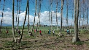 nens jugant al camp de futbol picnic les 3 flors