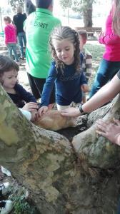 nens-tocant-animals-picnic-les-3-flors