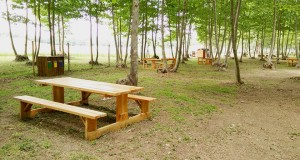 taula banc picnic les 3 flors