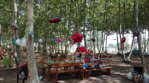 taula-decorada-per-aniversari-picnic-les-3-flors